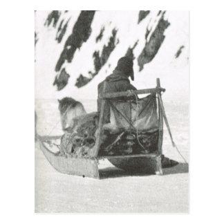 Vintages Grönland, reisend mit dem Schlitten Postkarte
