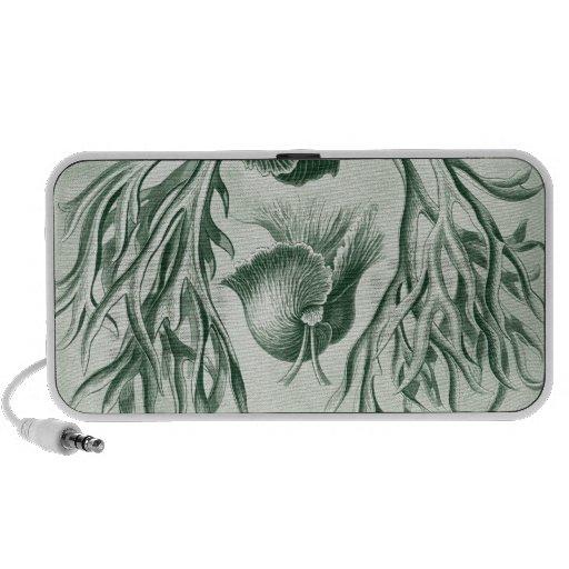 Vintages Haeckel iPhone Lautsprecher