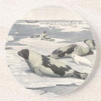 Vintages Harfen-Siegel im arktischen Schnee, Sandstein Untersetzer