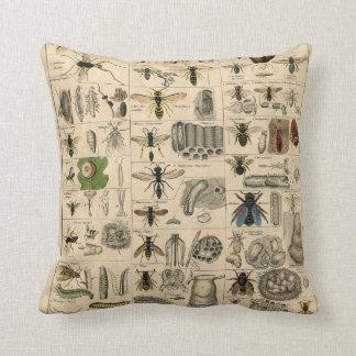 Vintages Insekten-Entomologie-Taxonomie-Polyester Kissen