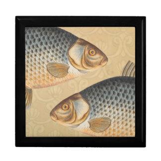 Vintages Karpfen-Frischwasserfisch-Zeichnen Schmuckschachtel