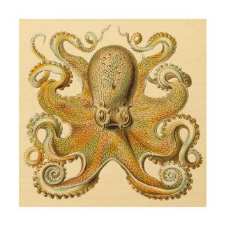 Vintages Kraken, Krake Gamochonia, Ernst Haeckel Holzleinwand