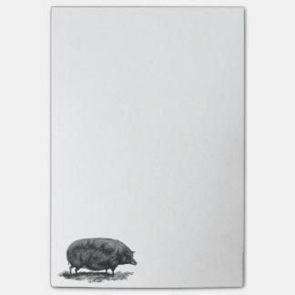 Vintages Schwein, das klebrige Anmerkungen ätzt Post-it Klebezettel