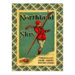 Vintages Ski-Plakat, Northland-Skis Postkarten