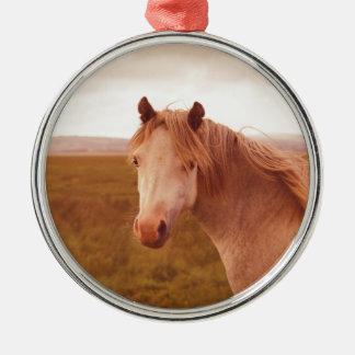 Vintages wildes Pferd Rundes Silberfarbenes Ornament