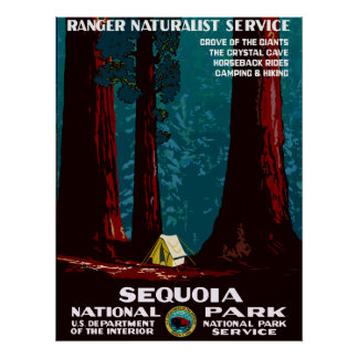 Vintages WPA Camping im Mammutbaum-Nationalpark Poster