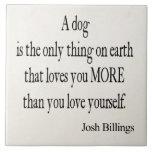 Vintages Zitat der Josh Fliesen