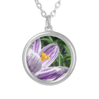 Violet Spring Crocus Versilberte Kette