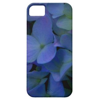 Violette lila Hydrangeas iPhone 5 Schutzhülle
