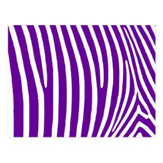 Violette lila Zebra-Streifen Postkarte