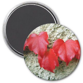 Virginia-Strampler verlässt großen runden Magneten Runder Magnet 7,6 Cm