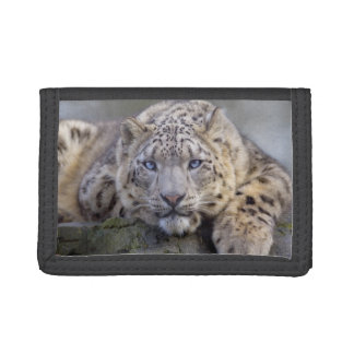 Vishnu Schnee-Leopard-Geldbörse