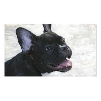 Visitenkarten der französischen Bulldogge