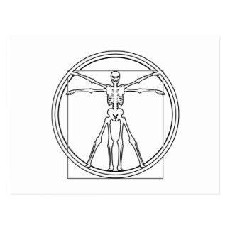 Vitruvian Skelett Postkarte