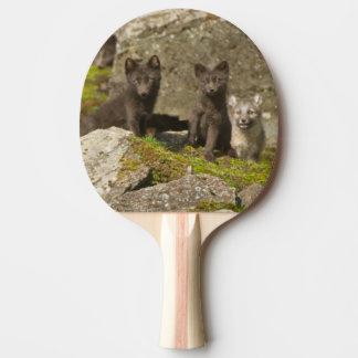 Vixen mit Ausrüstungen außerhalb ihrer Höhle Tischtennis Schläger