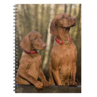 Vizslas Hunde Notizblock