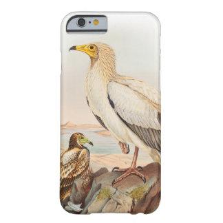 Vögel ägyptischer Geier-Johns Gould von Barely There iPhone 6 Hülle
