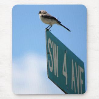 Vogel auf 4. Allee. mousepad