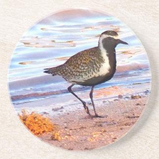 Vogel auf dem Strand Untersetzer