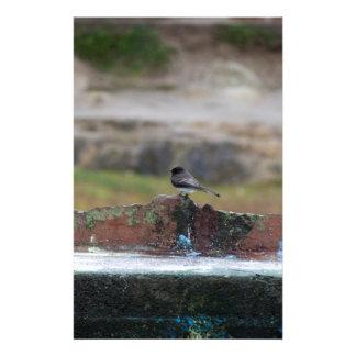 Vogel auf einer Wand Briefpapier