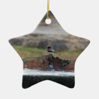 Vogel auf einer Wand Keramik Ornament