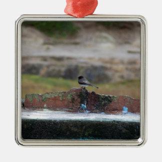 Vogel auf einer Wand Quadratisches Silberfarbenes Ornament