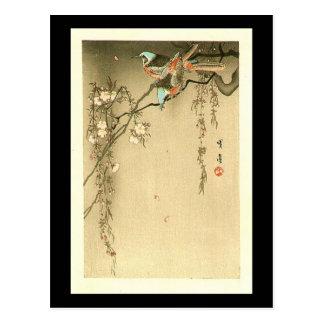 Vögel auf Kirschbaum durch Seitei Watanabe 1851 - Postkarte