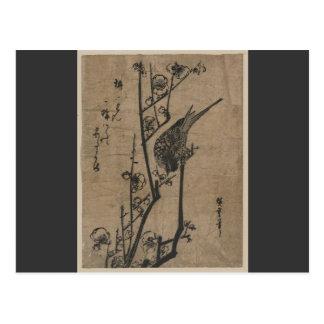 Vogel auf Pflaumen-Niederlassung Postkarte