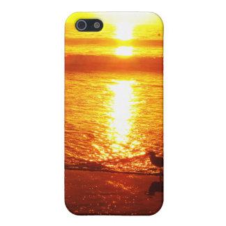 Vögel auf Santa Monica Strand am Sonnenuntergang iPhone 5 Schutzhülle