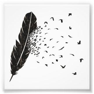 Vogel-Ausbrechen einer Feder Photographie