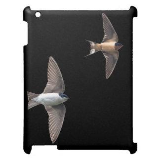 Vogel-Baum-Schwalbe und Scheunen-Schwalbe iPad Cover