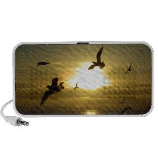 Vögel die am Sonnenuntergang fliegen Tragbare Speaker