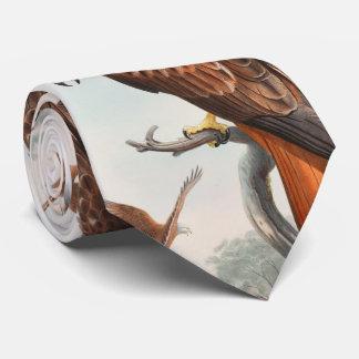 Vögel Drachen Glead Falke-Johns Gould von Individuelle Krawatten