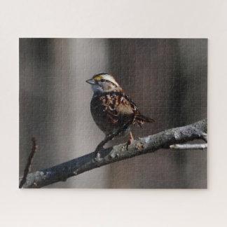 Vogel, Foto-Puzzlespiel Puzzle