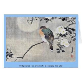 Vogel hockte auf einer Niederlassung eines Karte