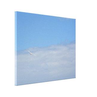 Vogel im Himmel Leinwanddruck