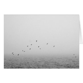Vögel im Nebel Karte