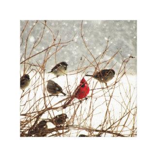 Vögel in Bush Leinwanddruck