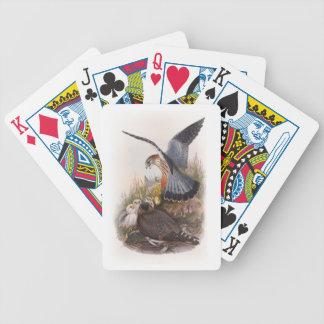 Vögel MERLIN-Falke-Johns Gould von Großbritannien Bicycle Spielkarten
