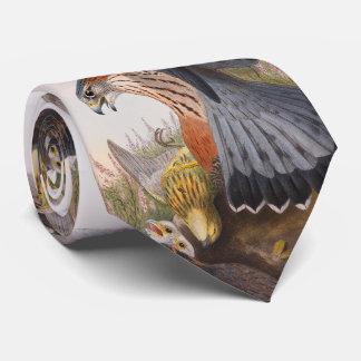 Vögel MERLIN-Falke-Johns Gould von Großbritannien Krawatten