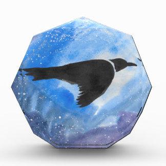 Vogel nachts auszeichnung