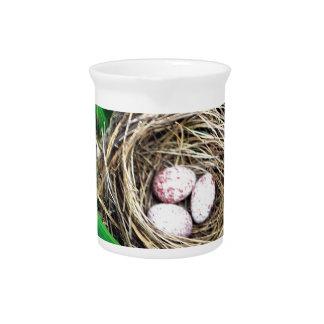 Vogel-Nest Krug