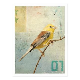 Vogel No.4 Postkarte