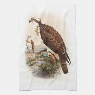 Vögel Osprey-Seefalke-Johns Gould von Geschirrtuch