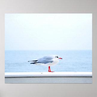 Vogel Poster