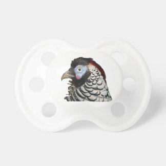 Vogel Schnuller