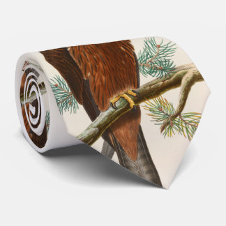 Vögel schwarzer Drachen-Falke-Johns Gould von Bedruckte Krawatte