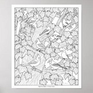 Vögel und Ahornbaum-erwachsener Farbton paginieren Poster
