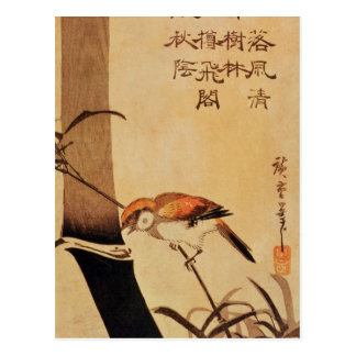Vogel und Bambus, c.1830, Postkarte