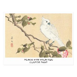 Vogel-und Blumen-Album, Cockatoo und Kamelie Postkarte
